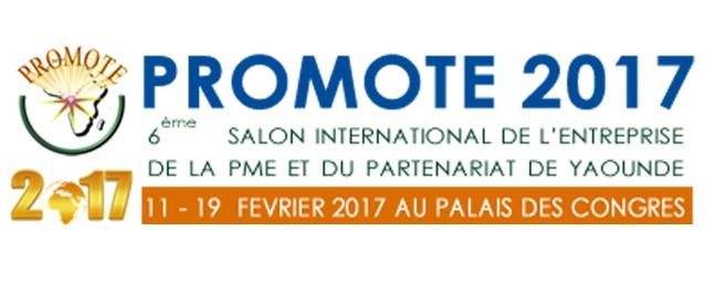 promote2017