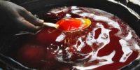 Les raffineurs camerounais peaufinent l'importation de 100 000 tonnes d'huile de palme brute