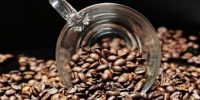 La Belgique est le 1er acheteur du café robusta camerounais et l'Allemagne pour l'arabica